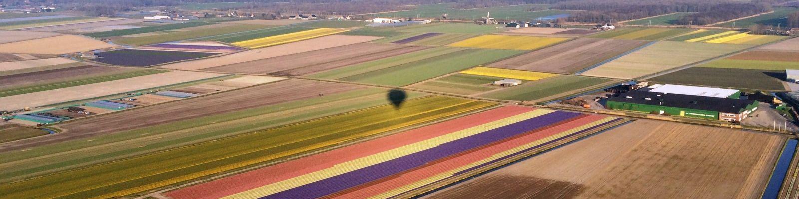 Ballonvaren boven de bollenstreek